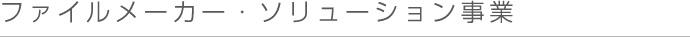 ファイルメーカー・ソリューション事業